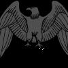 Commander Hawk